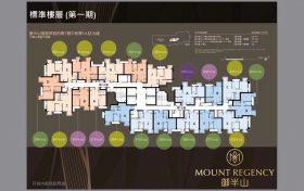 香港御半山户型图