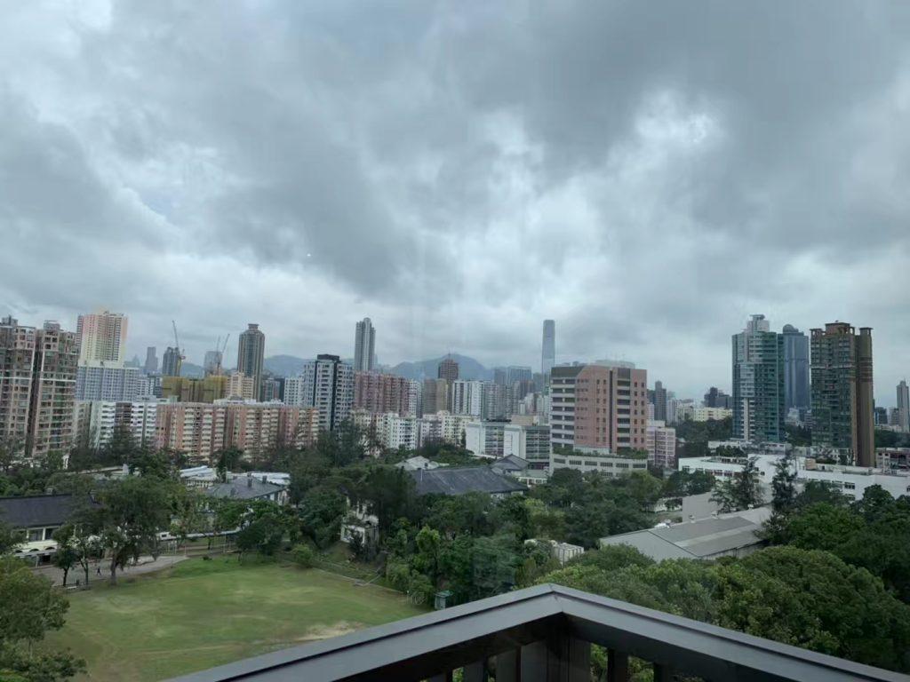 香港新楼盘晟林景观