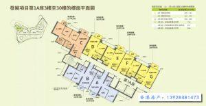 香港明翘汇户型图